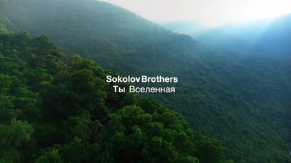 Sokolov - Universe